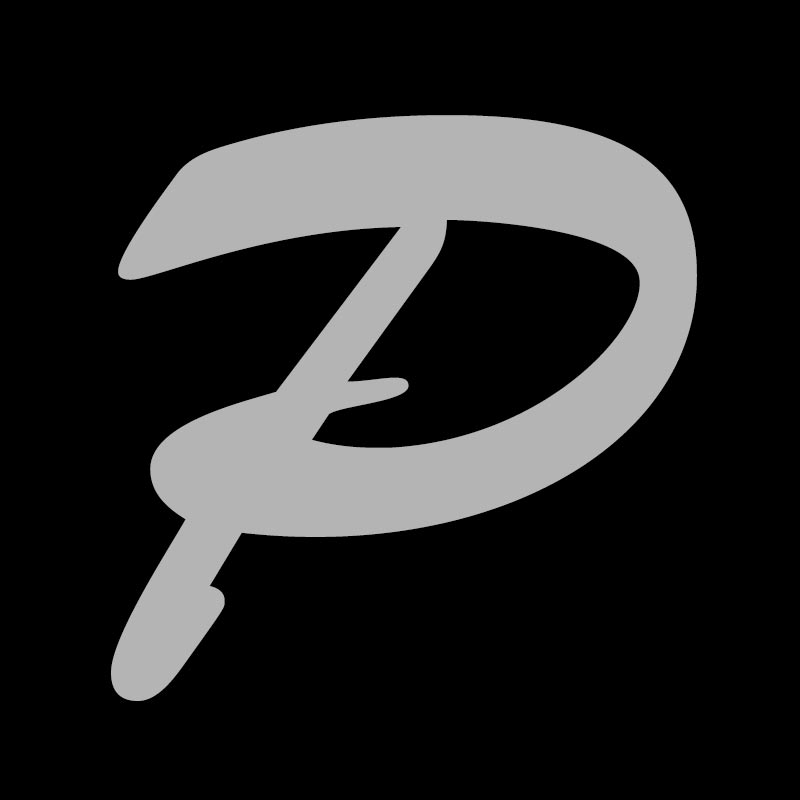 Logo Patzwaldt Metallbau